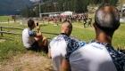 Atleti Q-bo Wellness indossano maglie Drytek Forcetek per la Spartan Race Alleghe 2018