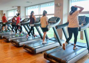 persone si allenano sui treamill technogym nella sala pesi del Q-bo Wellness