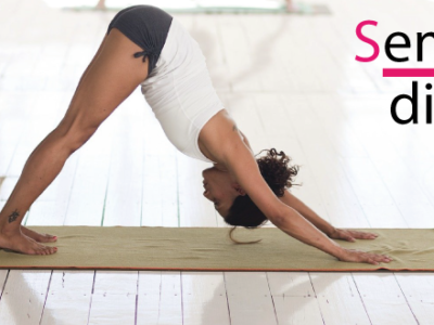 Seminari di approfondimento sullo yoga presso il Q-bo Wellness